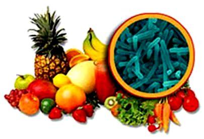 Cura conservação de alimentos