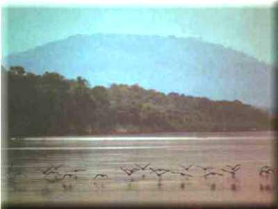 Parque Nacional de Pacaás Novos