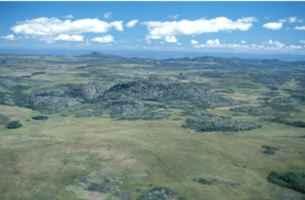 Parque Nacional de Sempre - Vivas