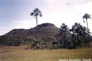 Parque Nacional do Jaú