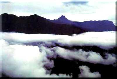 Parque Nacional do Pico da Neblina