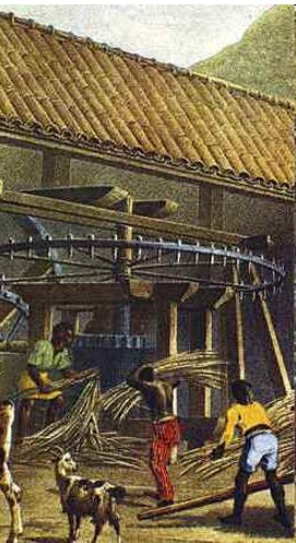 História da Cachaça