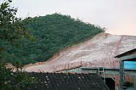 Desmatamento da Mata Atlântica no Rio de Janeiro