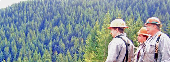 Dia do Engeheiro Florestal