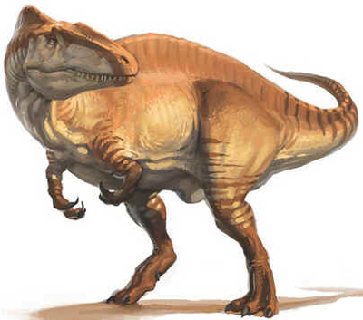 Acrocantossauro