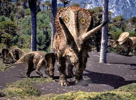 Ceratopsídeos
