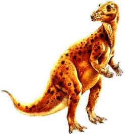 Evolução dos Dinossauros