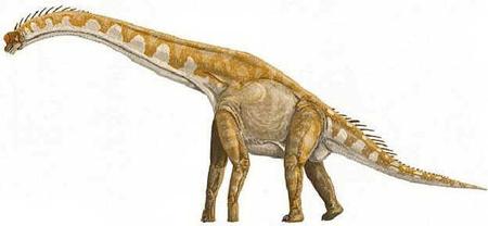 Giraffatitan
