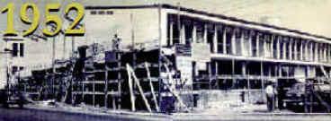 História da Arno