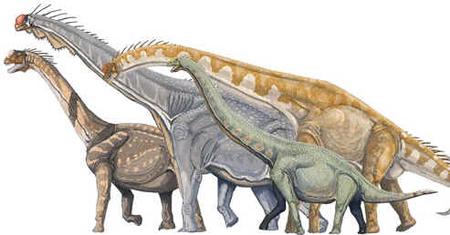 Saurópodes