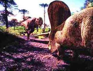Torossauro