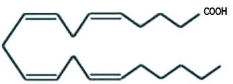 Estrutura química do ácido araquidônico