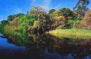 Rio Negro - Hidrografia do Brasil