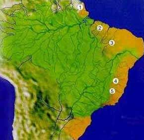 Bacia do Atlântico Sul - Hidrografia do Brasil
