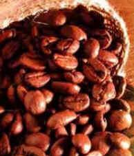 História do Café